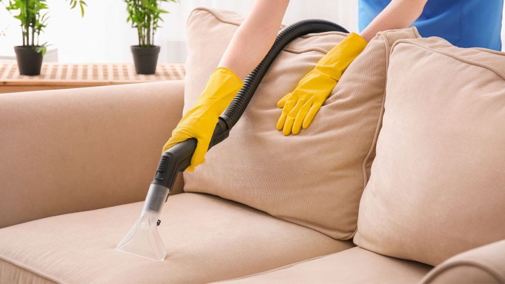 best upholstery cleaning service cover 1024x576